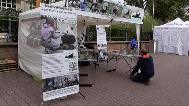 Frankfurter Zootage 2015
