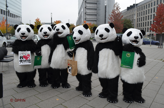 Große Pandas in Frankfurt
