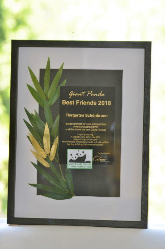 Auszeichnung: Giant Panda Best Friends