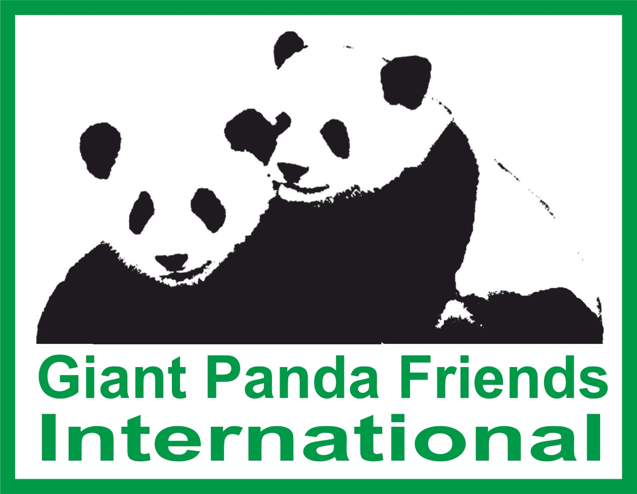 Giant Panda Friends International